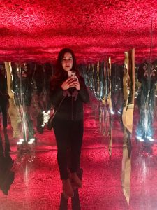 Mirrored rose-room thing